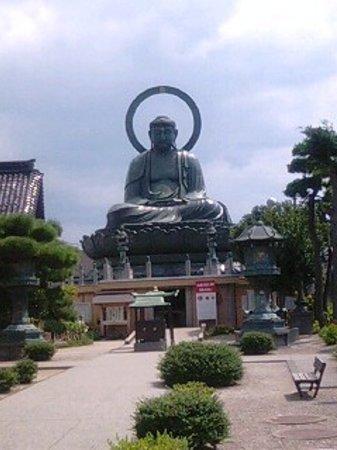 Takaoka, Japan: 大仏の全景