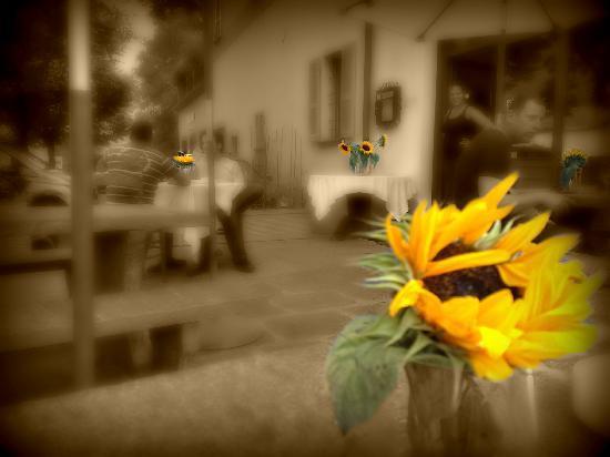 Antica Osteria Manetti: La terrazza