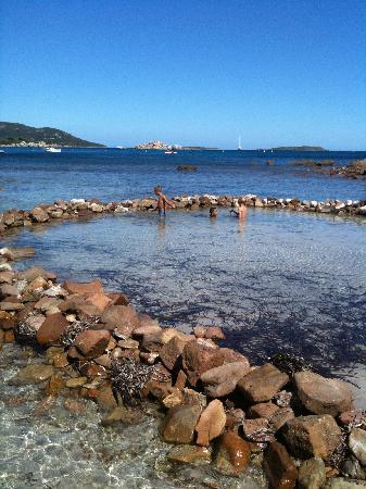 Le calme du matin plage naturiste picture of plage de for Petite piscine naturelle