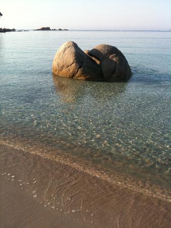 Plage de Palombaggia: le calme du matin, plage naturiste.