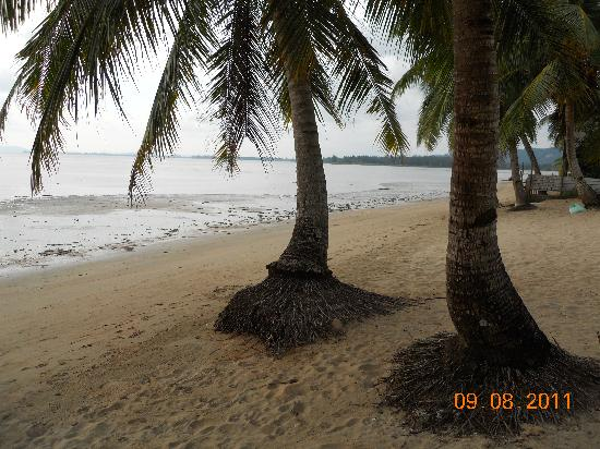Langkah Syabas Beach Resort: la spiaggia all'apparenza curata
