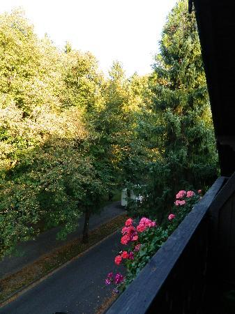 Hotel am Rupertuspark: a park view from the balcony