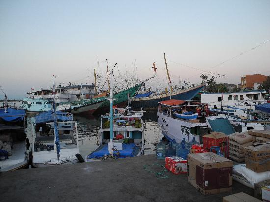 Paotere Harbor: im Hafen