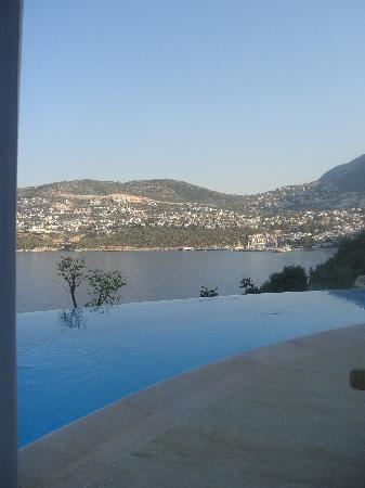 Hotel Villa Mahal: Pool Suite