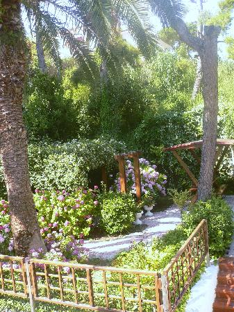 Hotel Alessandra: Il giardino