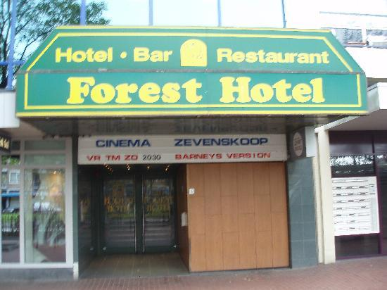 Forest Hotel: Entrance