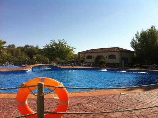 Santa Cruz De Mudela, إسبانيا: Piscina exterior