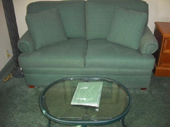 Hilton Garden Inn State College: Comfortable Sofa