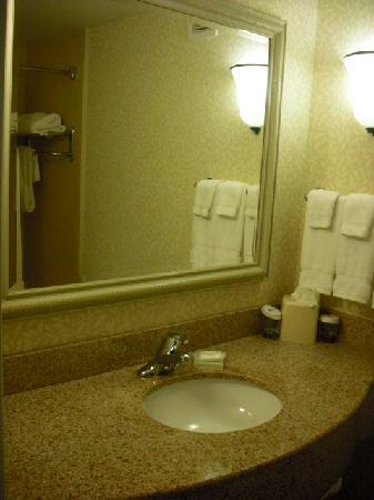 Hilton Garden Inn State College: Vanity