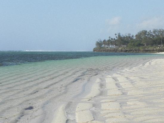 Hillpark Tiwi: la playa es distinta según el momento