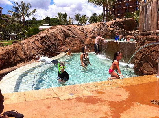 อูลานี อะดิสนี่ย์ รีสอร์ท & สปาอินฮาวาย: Dual level spa waterfall overlooking ocean