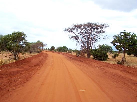 Ndohakashani Tours: foto dal safari 6