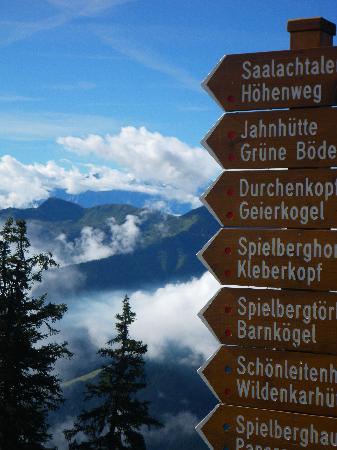 Kohlmais: walkers paradise