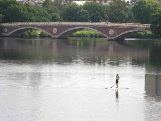 Charles River Bike Path: View down the river