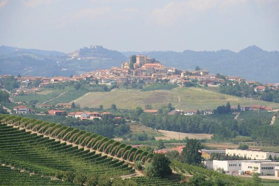 Grinzane Cavour Castle: Nice View