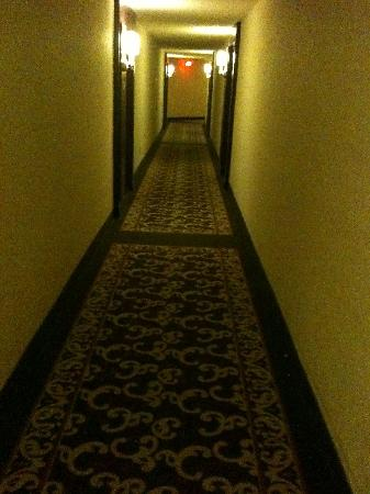 Albert at Bay Suite Hotel: Dark, dimly-lit hallways