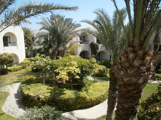 SENTIDO Djerba Beach : Un des jardins de l'hôtel