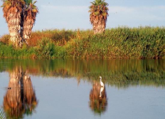 Posada La Poza: la  bellissima natura della laguna!
