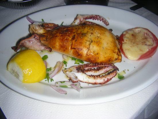 Paraport: Calamaro ripieno