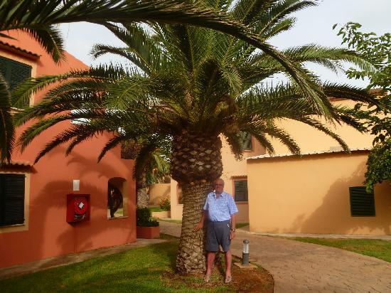 Aparthotel Club Andria: Aire tropical