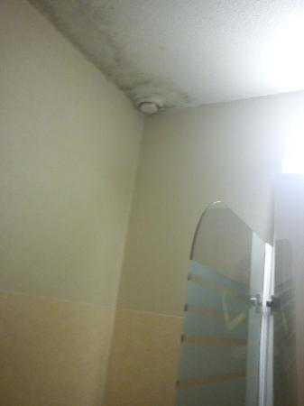 Hotel Bonsai: bathroom rotten ceiling