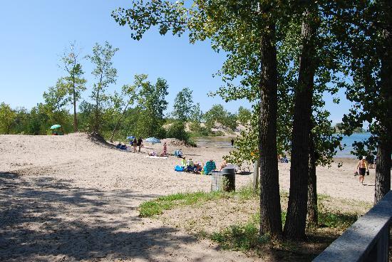 Huff Estates: La spiaggia con le dune
