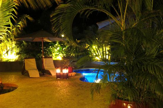Bamboo Bali Bonaire - Boutique Resort: New !! the loungepool