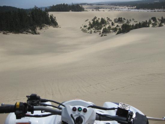 Dune Bugs ATV Tours: rolling dunes