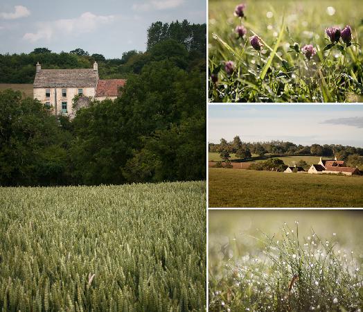 Sherston, UK: Carriers Farm