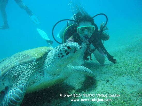 New Son Bijou Diving Center: Lidija diving with giant turtle - www.newsonbijou.com -