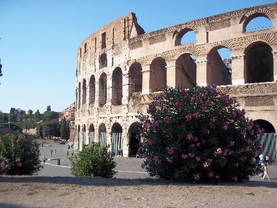 Romaround Tours: Wow! Colloseum!
