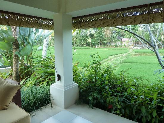 Villa Sabandari: Other Room view