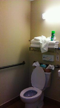 Navy Lodge Pensacola : Roach located in the bathroom and the last straw in this terrible experience. The scrubbing bubb