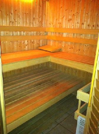 Ray's Bucktown Bed and Breakfast: dry sauna