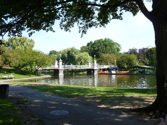 Swan boats boston 2019 all you need to know before you - Hotels near boston public garden ...