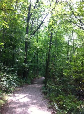 Paris, Kanada: one of the many trails