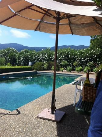 Arger-Martucci Vineyards: backyard wine tasting by the pool
