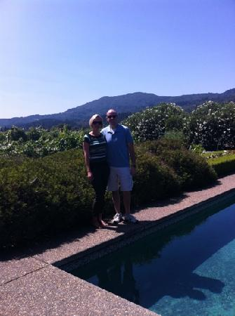 Arger-Martucci Vineyards: beautiful view