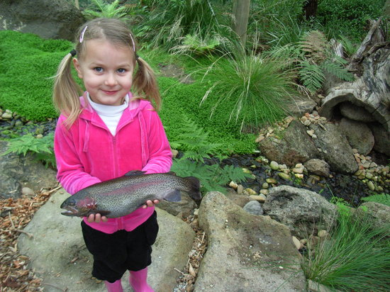 Rhyll, Australia: Happy little angler!