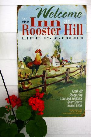 Rooster Hill Short Stay Suites: Such a sweetheart!