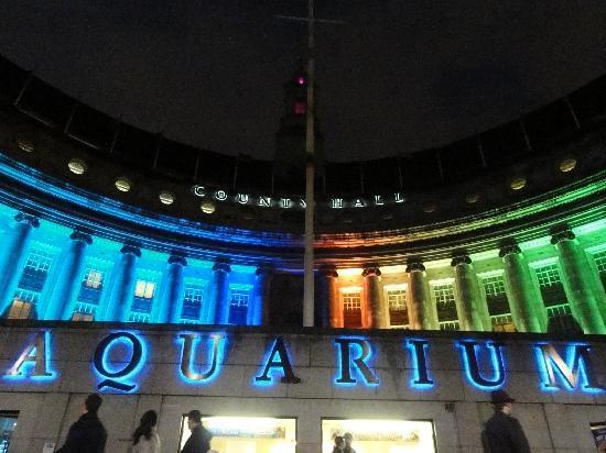Aquarium Picture Of Sea Life London Aquarium London