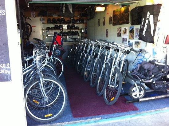 Bike D'Vine : the bikes