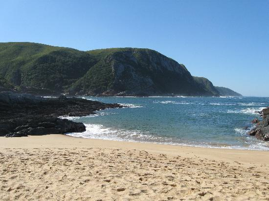 Garden Route (Tsitsikamma, Knysna, Wilderness) National Park: A cosy cove under the bar to while away the hours