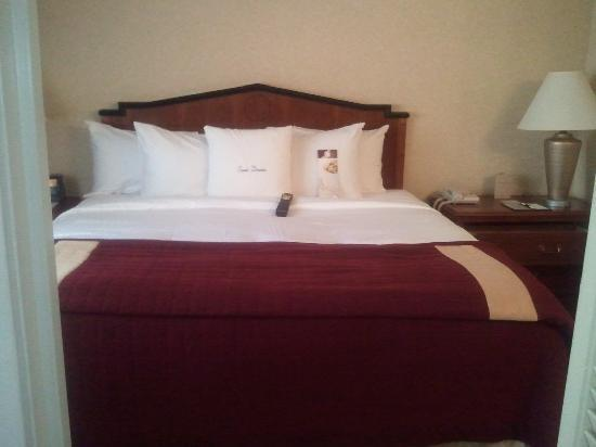 DoubleTree Suites by Hilton Hotel Cincinnati - Blue Ash: King Bed