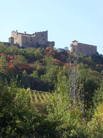 Vineyards outside Limoux