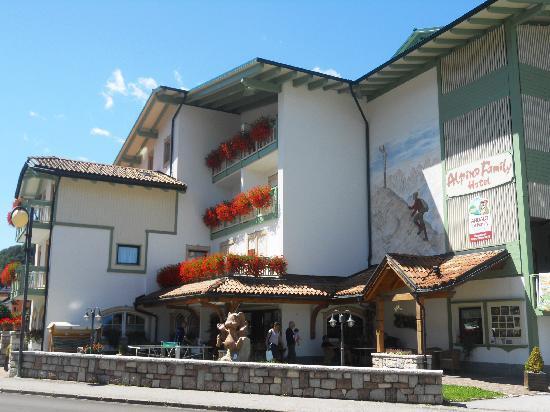 Alpino Family Hotel Picture