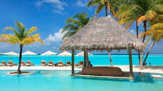 Gili Lankanfushi: Pool