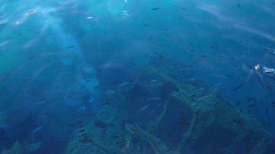Nautilus Motonave: foto del relitto