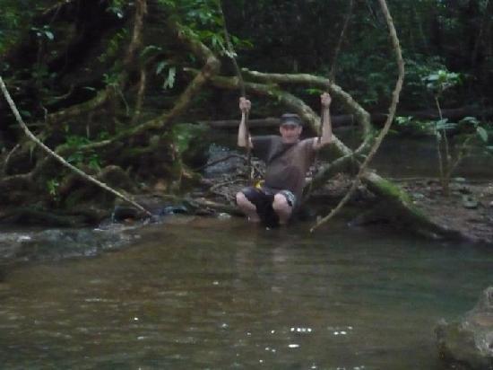 เขาสก ลาส์ ออคิเดียส์ รีสอร์ท: Swinging on a liana