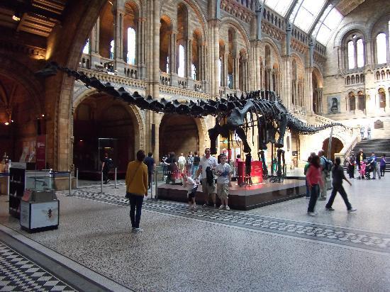พิพิธภัณฑ์ประวัติศาสตร์ธรรมชาติ: Greeting you on entrance